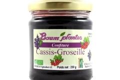 Confiture de Cassis-Groseille