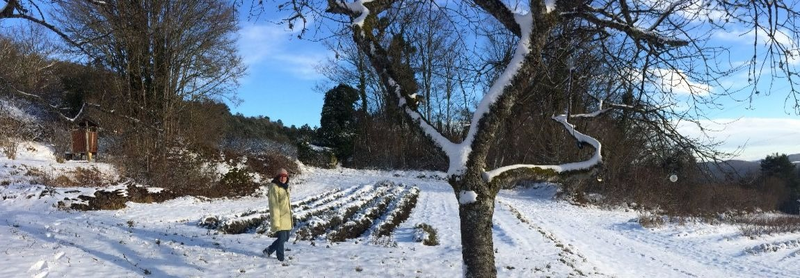Hiver à Baulme-la-Roche